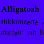 Alligatoah Tour 2015 – Akustiktour Akkordarbeit 2!