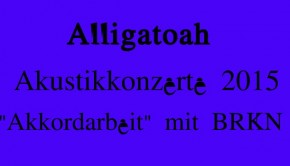 Alligatoah Akustikkonzerte 2015