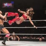 WWE Live 2015 in Deutschland