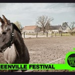 Greenville Festival 2014
